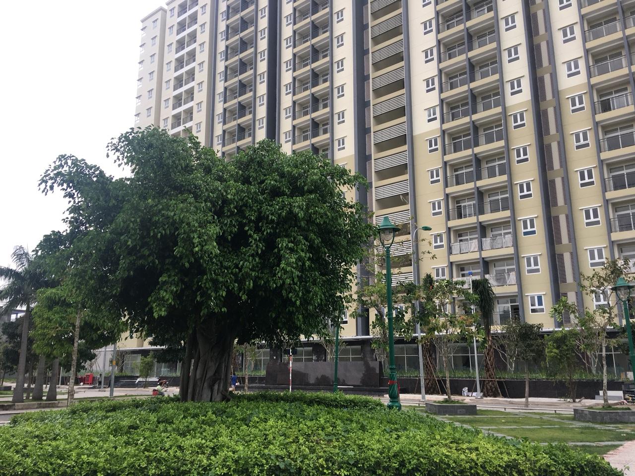 chung cư trong hiệp thành city